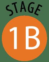 Stage 1B
